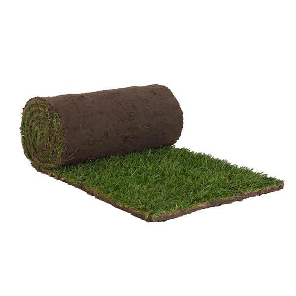 Grasrol per m² (250 x 40 cm)