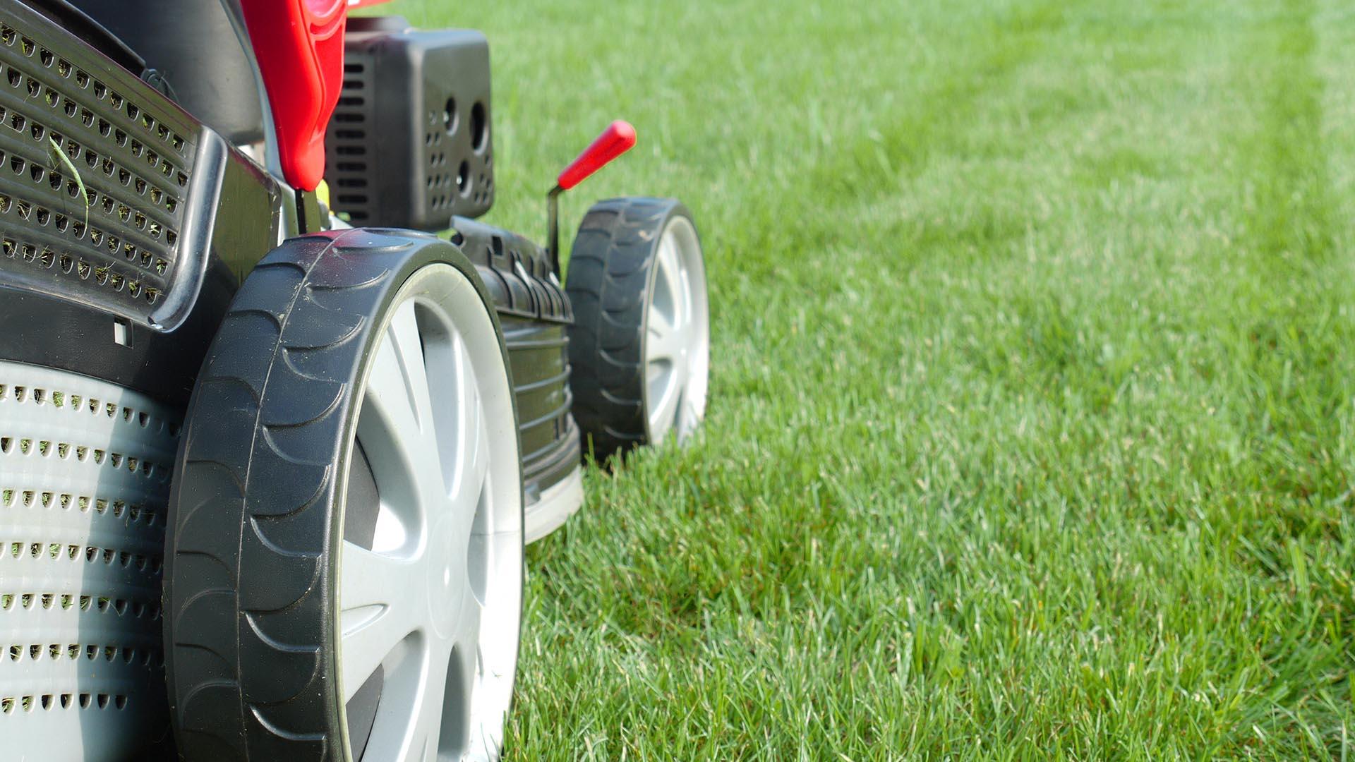 gras maaien hoe waarom wanneer hoe vaak