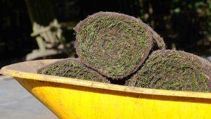 Graszoden direct afhalen kopen grasmatten